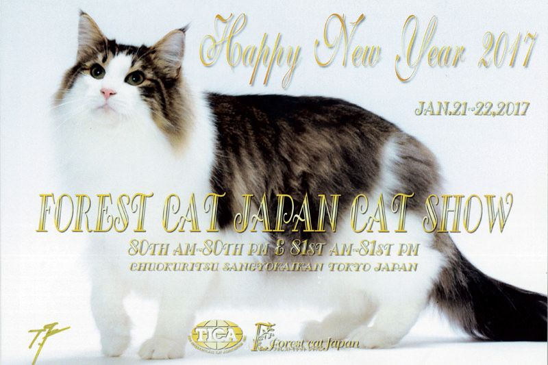 FCJ(Forest Cat Japan)80th-81th Cat Show