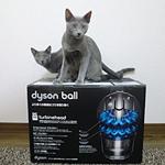 ダイソンの掃除機購入♪猫の抜け毛・ホコリ対策