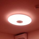 さくら色LEDで猫の夜の運動会が