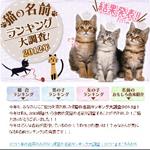 猫の名前ランキング 2012年版