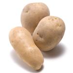 【家庭菜園】ジャガイモ(春作・秋作)の栽培方法