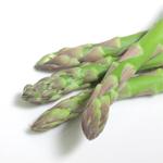 【家庭菜園】アスパラガスの栽培方法