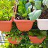 【家庭菜園】秋の空気に包まれて♪