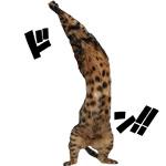 アウ!! ん〜スーパー! 今週のフランキーりくちゃん絶好調だよ〜♪|【猫と考える日本の未来】大いに気になる!!今後の日銀の政策対応