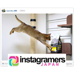 【Instagram】IGersJP×「ピュリナ プロプラン」愛犬・愛猫フォト投稿アンバサダー ダイソン(dyson)ハンディクリーナーが届きました♪